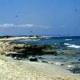 L'isola di Ibiza si trova in Spagna, Mar Mediterraneo, e fa parte delle Isole Baleari. Il suo nome in catalano è Eivissa ed è così che la chiamano gli spagnoli; Ibiza è patrimonio dell'umanità protetto dall'Unesco per biodiversità e cultura.