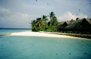 Maldive Madoogali