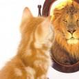Tra le varie forme di autostima, è l'autostima globale, quella che nasce dall'accettazione e dal rispetto complessivo di sé stessi, a essere predittiva del benessere psicologico.