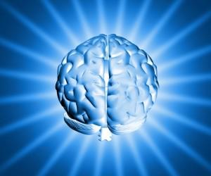 emisferi-cerebrali